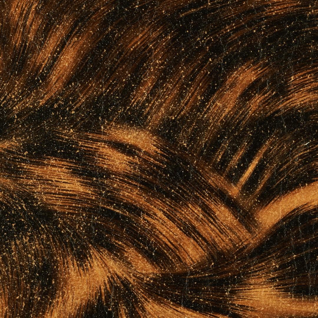 Hair Cuero Image